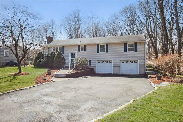 19 Lakewood Drive, Norwalk, CT 06851 (MLS #170382459) :: Next Level Group