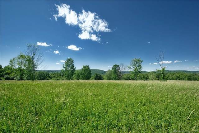 27 Kinney Hill Road, Washington, CT 06777 (MLS #170384613) :: Spectrum Real Estate Consultants