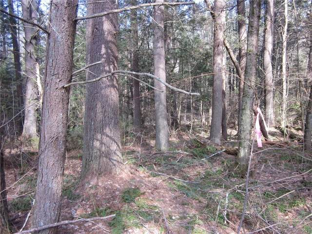 Lot 73 Little Bunggee Hill Road, Woodstock, CT 06281 (MLS #170385999) :: Next Level Group