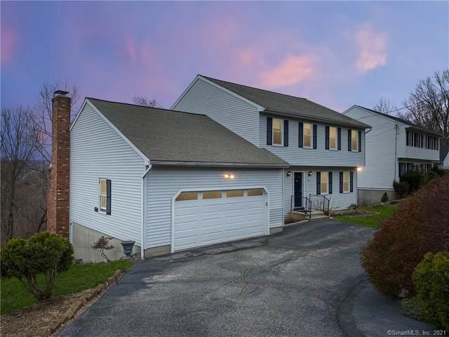 13 Shortell Drive, Ansonia, CT 06401 (MLS #170386498) :: Around Town Real Estate Team