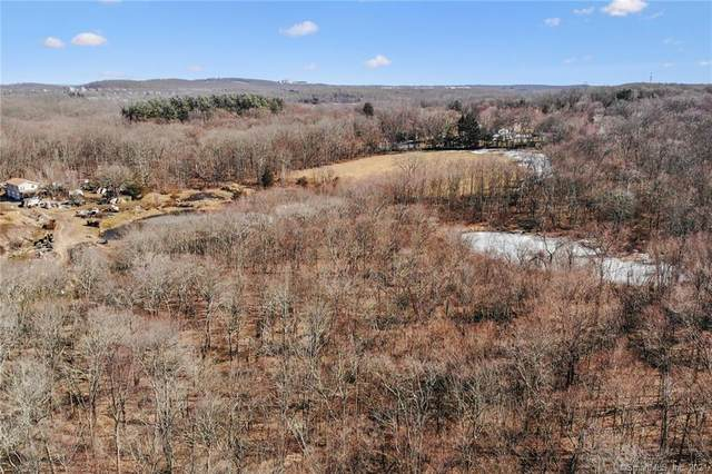 443 Old Woodbury Road, Southbury, CT 06488 (MLS #170387958) :: Around Town Real Estate Team