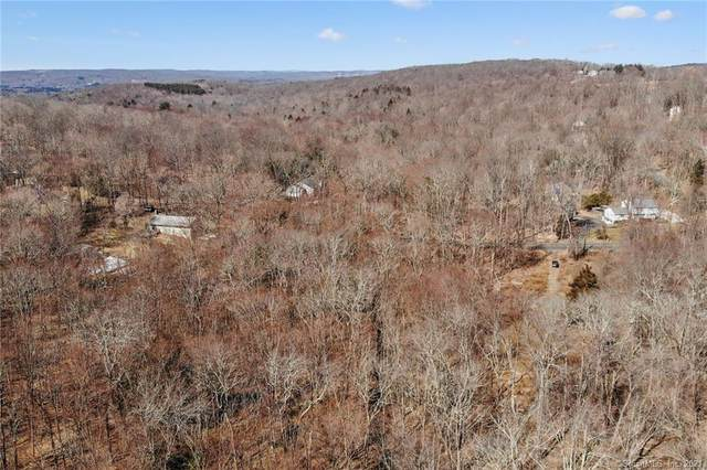 786 Reservoir Road, Southbury, CT 06488 (MLS #170387968) :: Carbutti & Co Realtors
