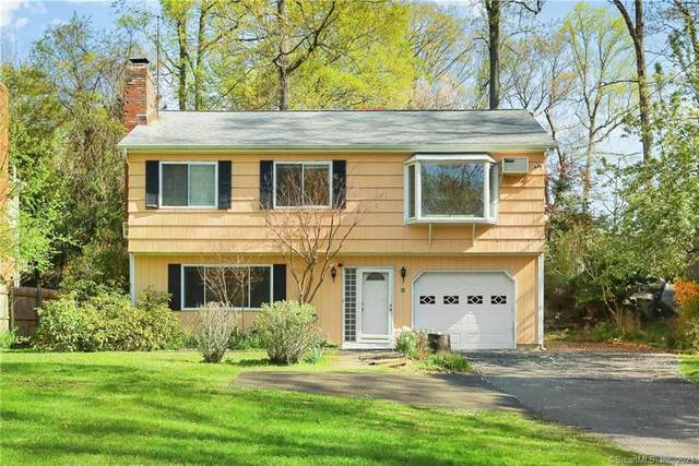 20 Chestnut Street, Greenwich, CT 06807 (MLS #170388001) :: Frank Schiavone with William Raveis Real Estate