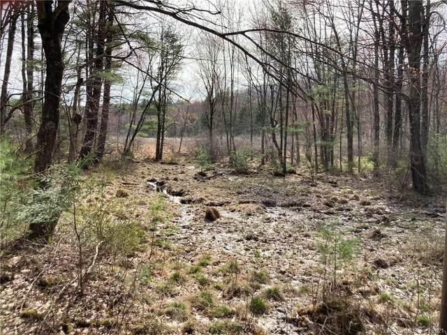 000 Route 198, Woodstock, CT 06281 (MLS #170388462) :: Kendall Group Real Estate | Keller Williams