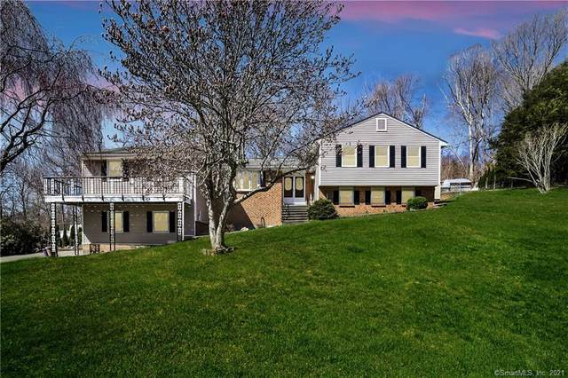113 Holly Mar Hill Road, North Branford, CT 06472 (MLS #170389089) :: Next Level Group
