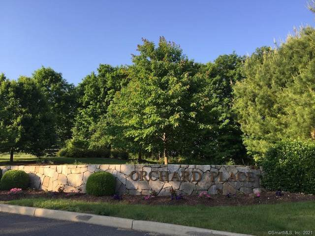 20 Orchard Street #307, Brookfield, CT 06804 (MLS #170389321) :: Team Phoenix