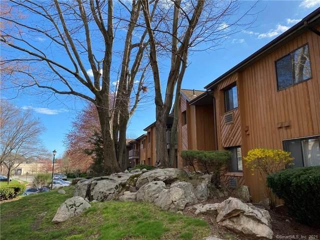 61 Riverview Drive #61, Bridgeport, CT 06606 (MLS #170389496) :: Forever Homes Real Estate, LLC