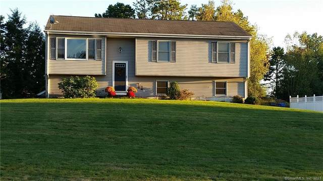 163 Dara Drive, Colchester, CT 06415 (MLS #170390615) :: Around Town Real Estate Team