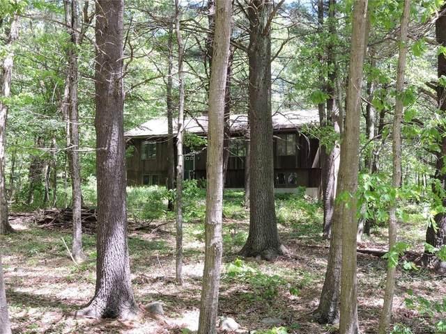 76 Weldon Court, Goshen, CT 06756 (MLS #170390865) :: GEN Next Real Estate