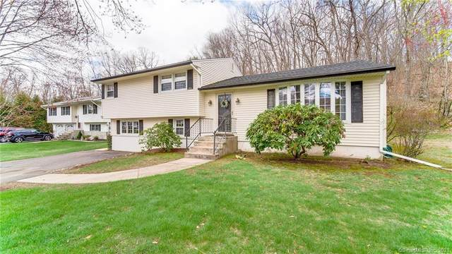 16 Badger Road, Wolcott, CT 06716 (MLS #170391129) :: Next Level Group