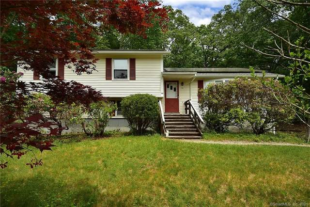53 Farmstead Road, Mansfield, CT 06268 (MLS #170392157) :: Next Level Group