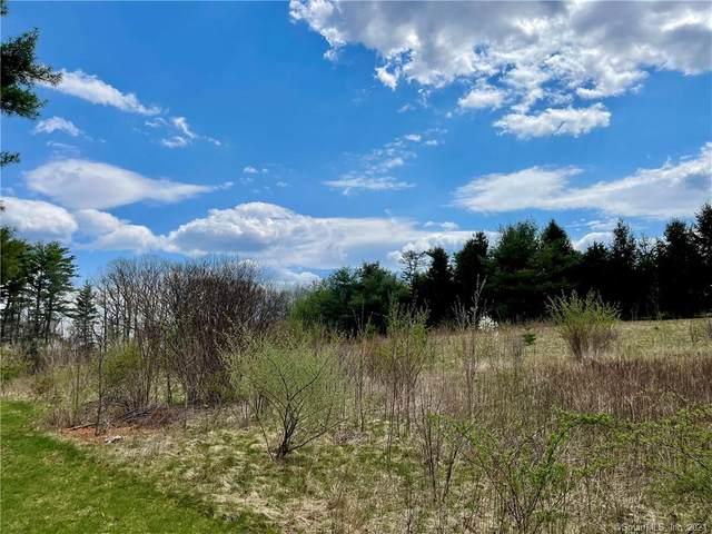 58 Chesham Road, Middlebury, CT 06762 (MLS #170392179) :: Michael & Associates Premium Properties | MAPP TEAM