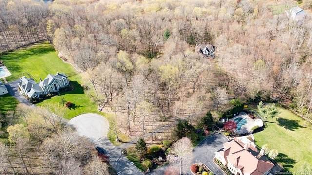 14 Edna Court, Brookfield, CT 06804 (MLS #170393329) :: Around Town Real Estate Team