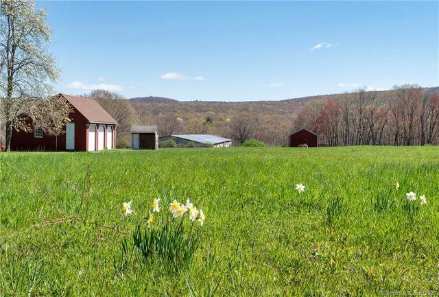 47 Great Hill Road, Portland, CT 06480 (MLS #170393660) :: Around Town Real Estate Team