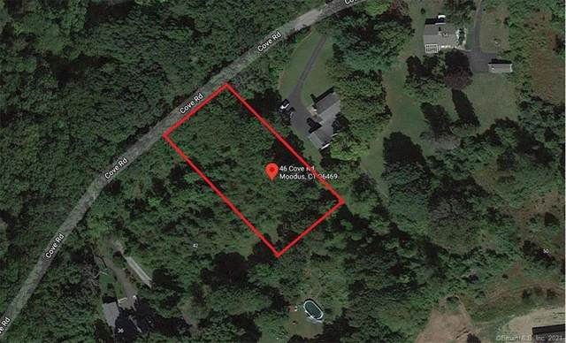 46 Cove Road, East Haddam, CT 06469 (MLS #170394133) :: Next Level Group