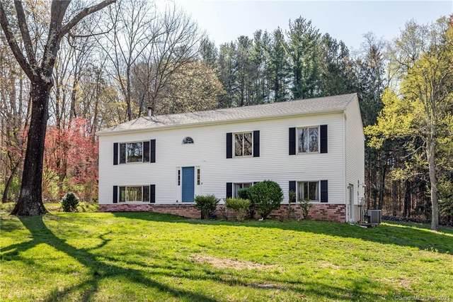 10 Lafontan Drive, Kent, CT 06785 (MLS #170396100) :: Spectrum Real Estate Consultants