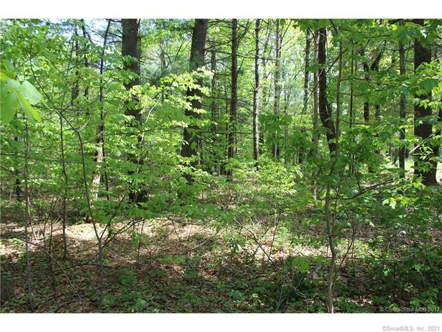 Lot 2 Brook Road, Hampton, CT 06247 (MLS #170396862) :: Team Feola & Lanzante | Keller Williams Trumbull