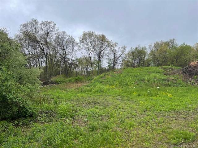 29 Stone Oak Drive, New Milford, CT 06776 (MLS #170397206) :: Carbutti & Co Realtors
