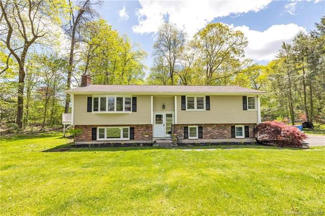 29 Webster Drive, Shelton, CT 06484 (MLS #170399940) :: Team Feola & Lanzante | Keller Williams Trumbull