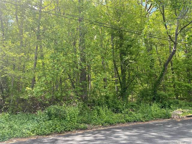 18 Davis Road, Woodbridge, CT 06525 (MLS #170399990) :: Around Town Real Estate Team