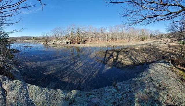 229 Stony Creek Road, Branford, CT 06405 (MLS #170400025) :: Spectrum Real Estate Consultants