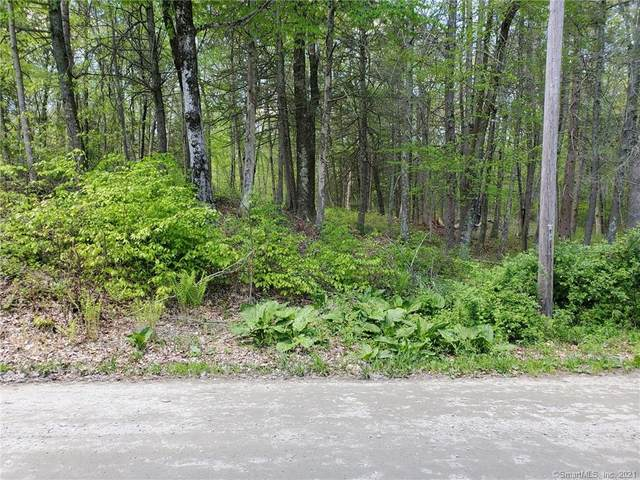 217 Lakeside Drive, Lebanon, CT 06249 (MLS #170400845) :: The Higgins Group - The CT Home Finder
