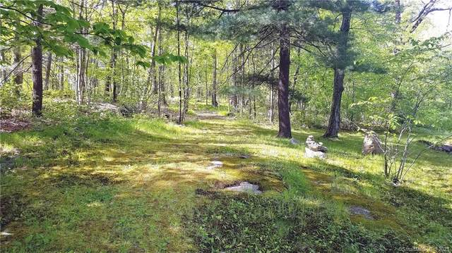 1 Pine Hill Trail, Sherman, CT 06784 (MLS #170400921) :: Next Level Group