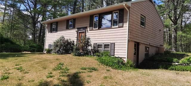 379 E Putnam Road, Putnam, CT 06260 (MLS #170401218) :: Spectrum Real Estate Consultants