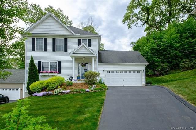 74 Royal Oaks Avenue, East Hampton, CT 06424 (MLS #170403128) :: Mark Boyland Real Estate Team