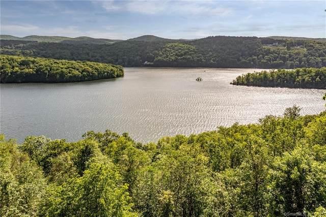 186 Green Pond Road, Sherman, CT 06784 (MLS #170403982) :: Tim Dent Real Estate Group