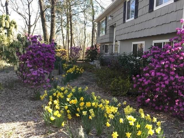 45 Guinea Road, Monroe, CT 06468 (MLS #170405235) :: Spectrum Real Estate Consultants