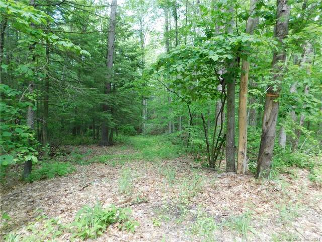 Lot 1 Old Turnpike Road North, North Canaan, CT 06018 (MLS #170406425) :: GEN Next Real Estate