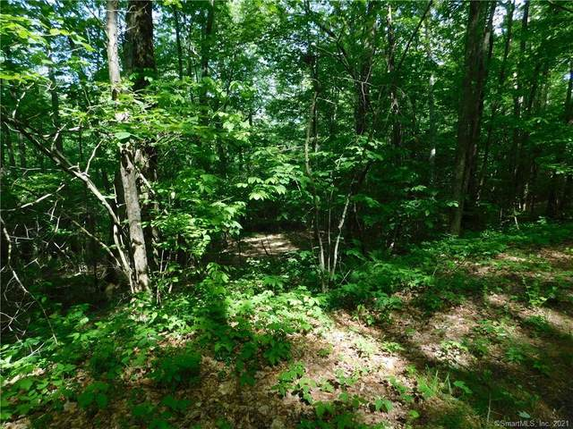 Lot 3 Old Turnpike Road North, North Canaan, CT 06018 (MLS #170406438) :: GEN Next Real Estate
