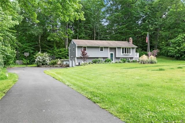13 Willow Run, Brookfield, CT 06804 (MLS #170407925) :: Tim Dent Real Estate Group