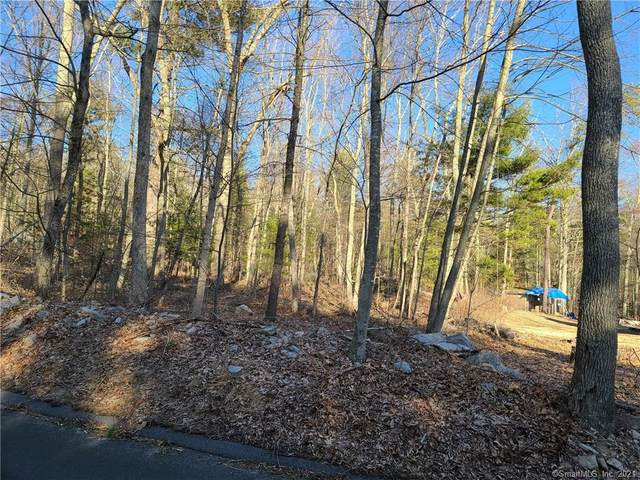 54 & 78 Breakneck Hill Road, Killingly, CT 06241 (MLS #170408045) :: Spectrum Real Estate Consultants