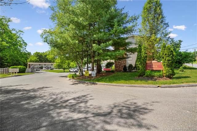 18 Harry Brook Village #18, New Milford, CT 06776 (MLS #170408332) :: Team Phoenix