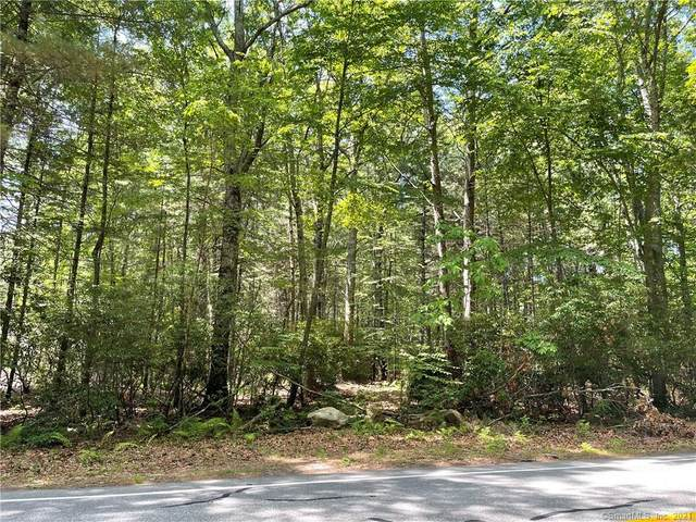 54 Town Woods Road, Old Lyme, CT 06371 (MLS #170409937) :: Next Level Group