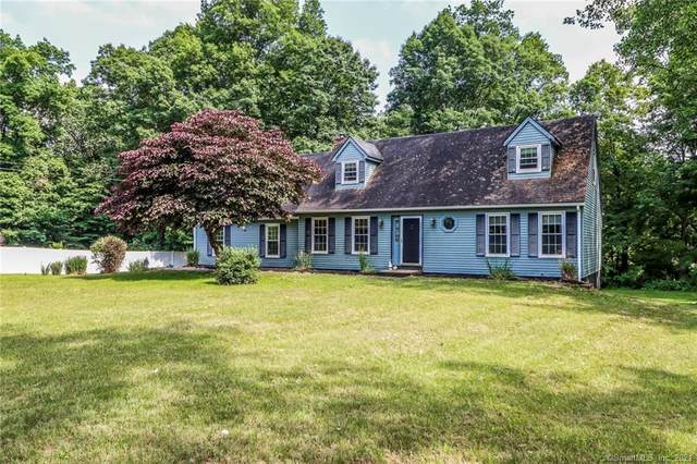 19 Long Mountain Road, New Milford, CT 06776 (MLS #170412890) :: Spectrum Real Estate Consultants