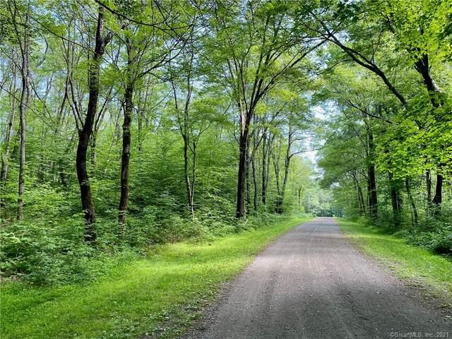 00 Old Paddock Lane, Kent, CT 06757 (MLS #170414573) :: Kendall Group Real Estate | Keller Williams