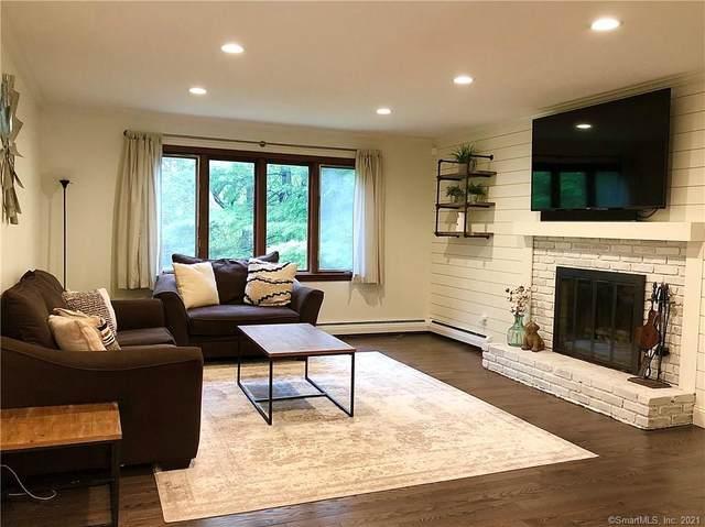 44 White Birch Road, East Hampton, CT 06424 (MLS #170418855) :: Team Feola & Lanzante | Keller Williams Trumbull