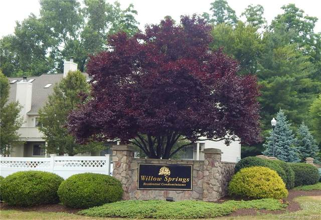 189 Willow Springs #189, New Milford, CT 06776 (MLS #170423698) :: Next Level Group