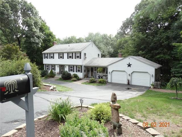 133 Green Tree Lane, Somers, CT 06071 (MLS #170426329) :: Linda Edelwich Company Agents on Main
