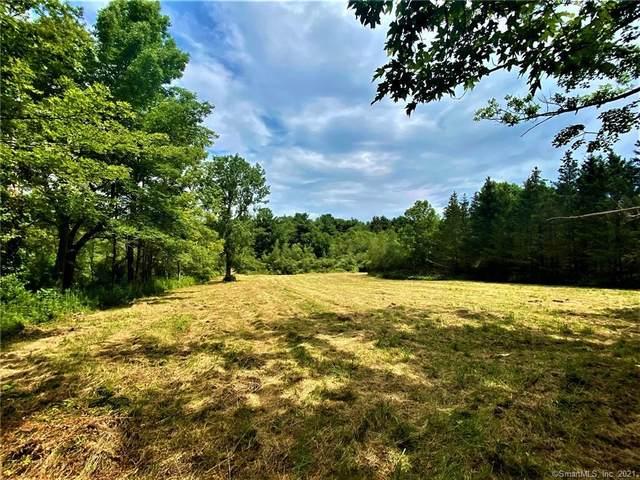 495 Winchester Road, Norfolk, CT 06058 (MLS #170426502) :: Michael & Associates Premium Properties | MAPP TEAM