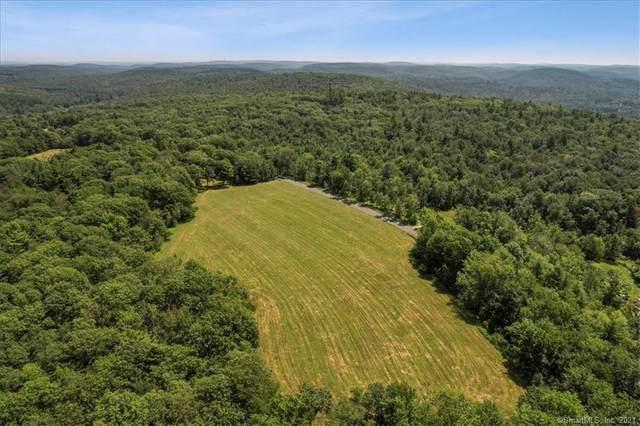 0 Loon Meadow Drive, Norfolk, CT 06058 (MLS #170429195) :: Michael & Associates Premium Properties | MAPP TEAM