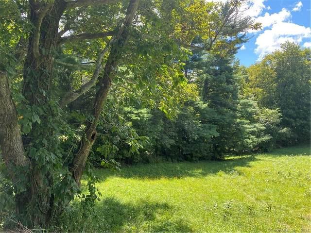 0 Marsh Road, Bristol, CT 06010 (MLS #170433987) :: Forever Homes Real Estate, LLC