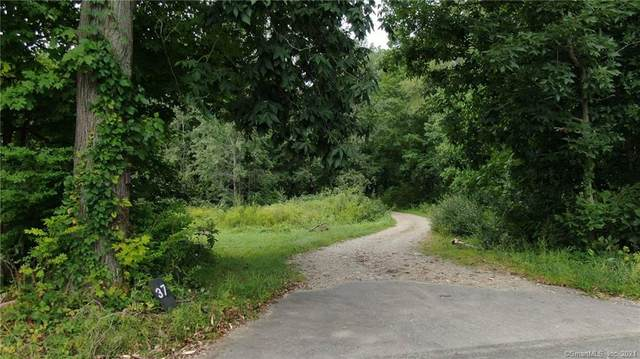 37A New Sweden Road, Woodstock, CT 06281 (MLS #170434039) :: Linda Edelwich Company Agents on Main
