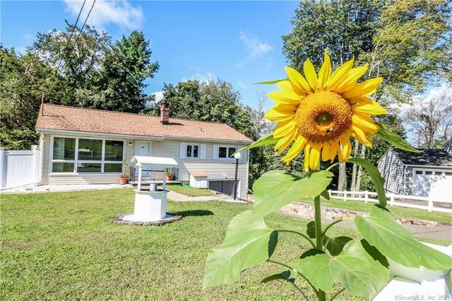 19 Highland Park Drive, Danbury, CT 06811 (MLS #170435231) :: Linda Edelwich Company Agents on Main