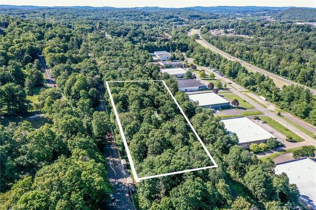 118 Stony Hill Road, Brookfield, CT 06804 (MLS #170435988) :: Around Town Real Estate Team