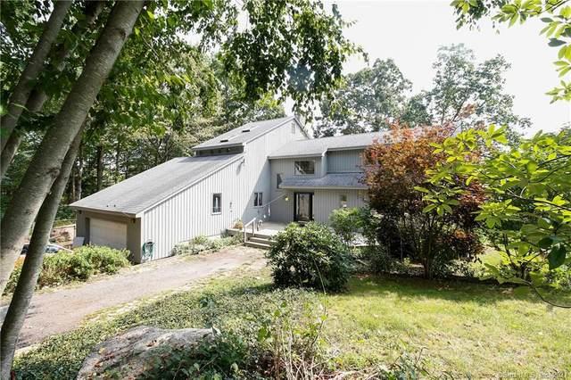 224 Hog Hill Road, East Hampton, CT 06424 (MLS #170437704) :: Around Town Real Estate Team