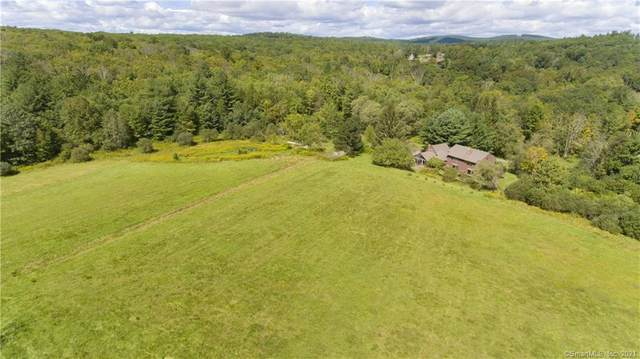 16 Page Road, Litchfield, CT 06759 (MLS #170438151) :: Tim Dent Real Estate Group